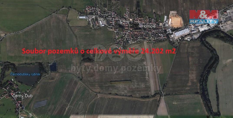 Prodej, pole, 24202 m2, Homole