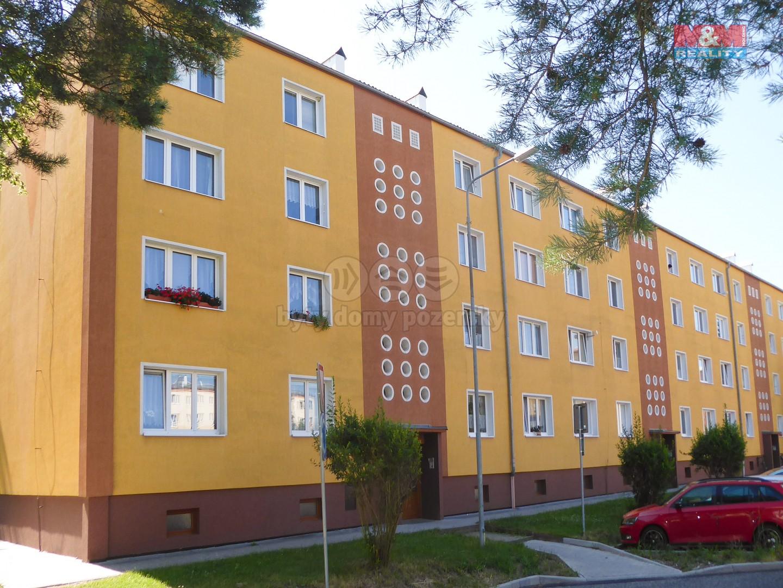 Prodej, byt 2+1, 56 m2, Nová Role, ul. Krátká