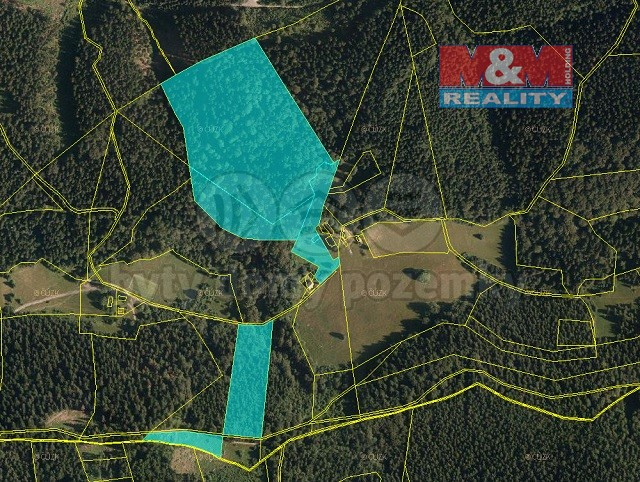Prodej, les, 72.825 m2, Valašská Bystřice