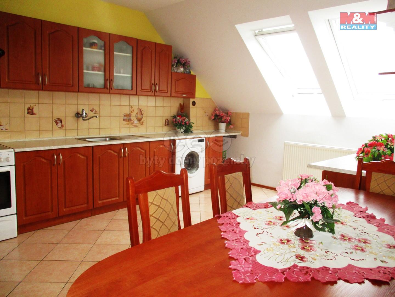 Prodej, rodinný dům 13+3, 530 m2, Brno