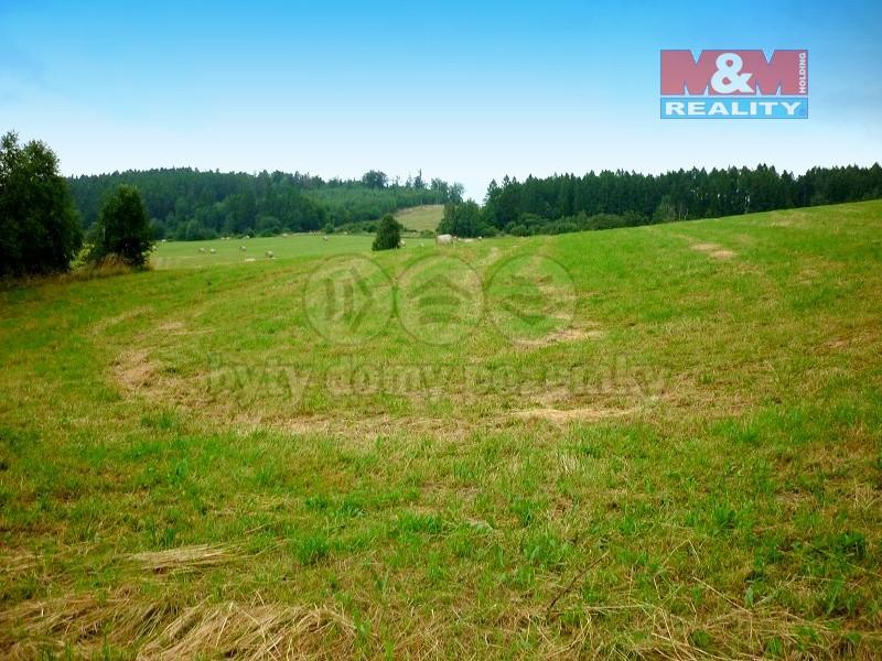 Prodej, pozemek 6000 m2, louka 25107 m2, Oborná