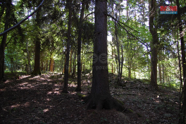 Prodej, les, 14 132 m2, Vernířovice