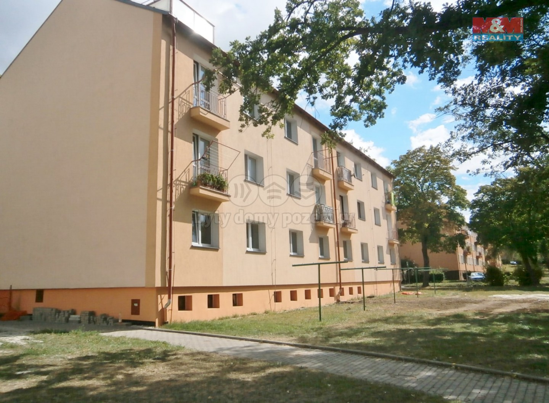 Prodej, byt 2+1, 56 m2, Ostrov, ul. Seifertova