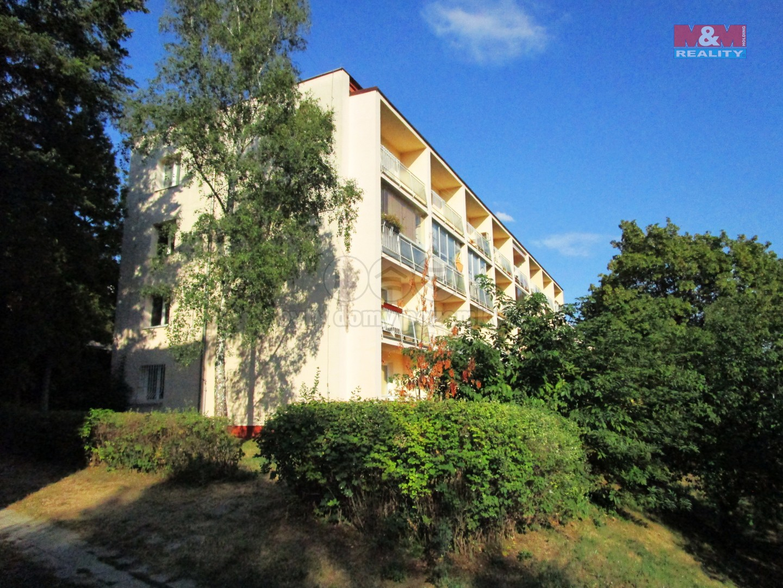 Pronájem, byt 3+1, 75 m2, Brno, ul. Preslova