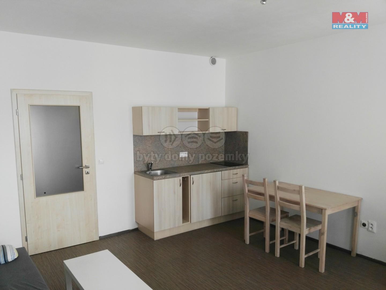 Prodej, byt 1+kk, 31 m2, Olomouc, ul. Novosadský dvůr
