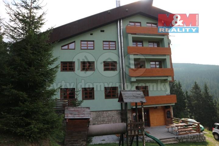Prodej, apartmán 2+kk, 40 m2, Černý Důl