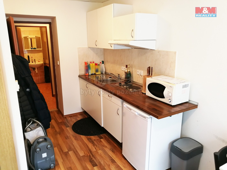 Pronájem, byt 1+kk, 25 m2, Brno, ul. Provazníkova