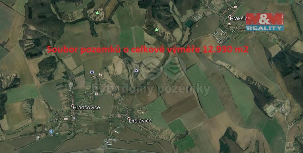 Prodej, louka, 12930 m2, Drslavice