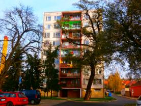 Prodej, byt 3+1, 69 m2, Podbořany