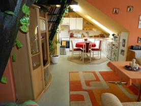 Prodej, byt, 2+kk, 65 m2, Plzeň