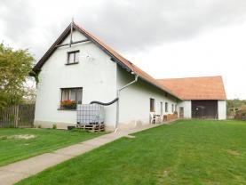 Prodej, rodinný dům s pozemky,10000 m2, Opočnice