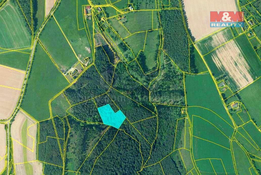 Prodej lesa, 3380 m², Všelibice