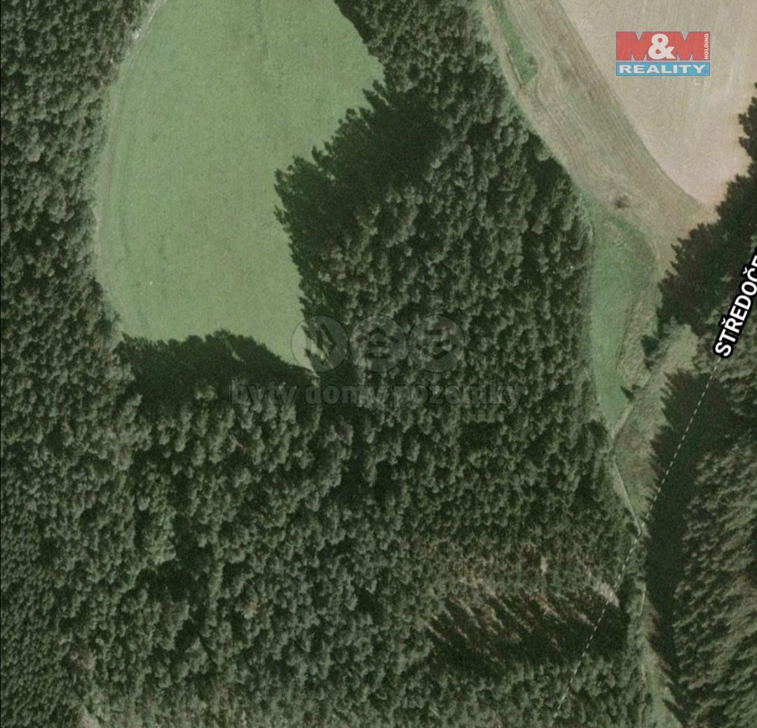 Prodej lesa, 982 m², Blažejovice