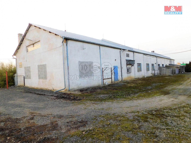Prodej výrobního objektu, 21263 m², Odrava