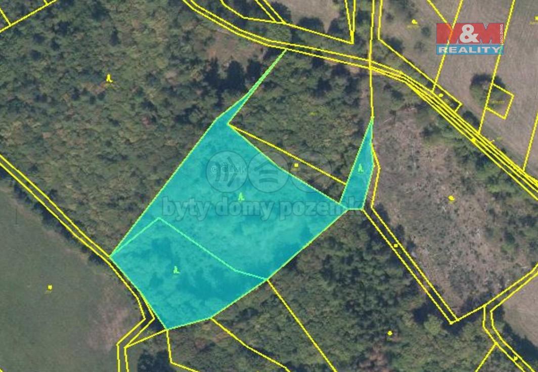 Prodej lesa, 10455 m², Bušín