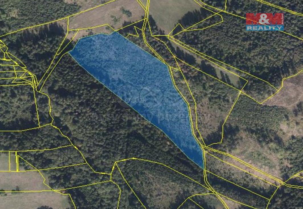 Prodej lesa, 102035 m², Postřelmůvek
