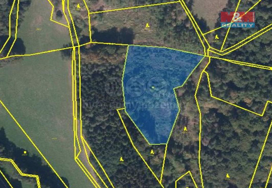 Prodej lesa, 18571 m², Bušín