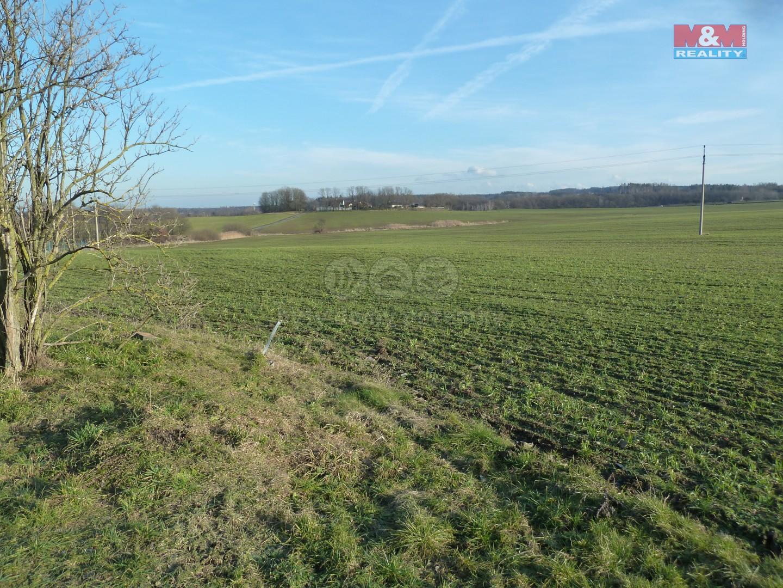 Prodej pozemku k bydlení, 7050 m², Turkovice
