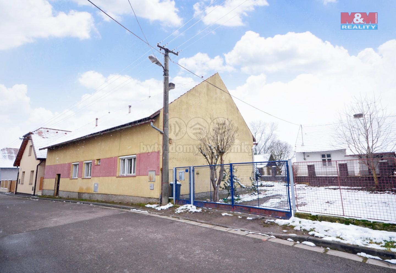 Prodej rodinného domu, 1130 m², Topol