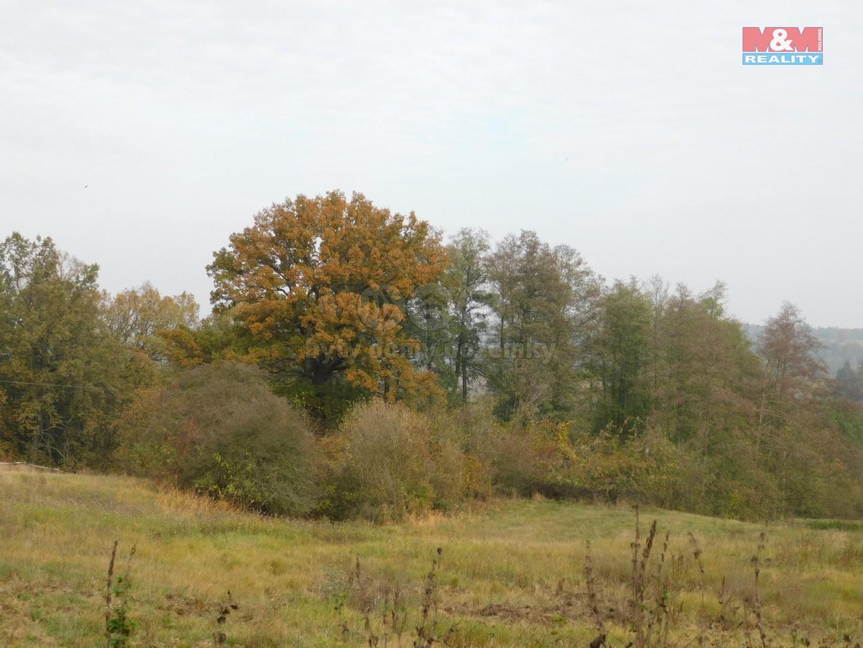 pozemek (Prodej pozemku, 1816 m², Stružnice), foto 1/4