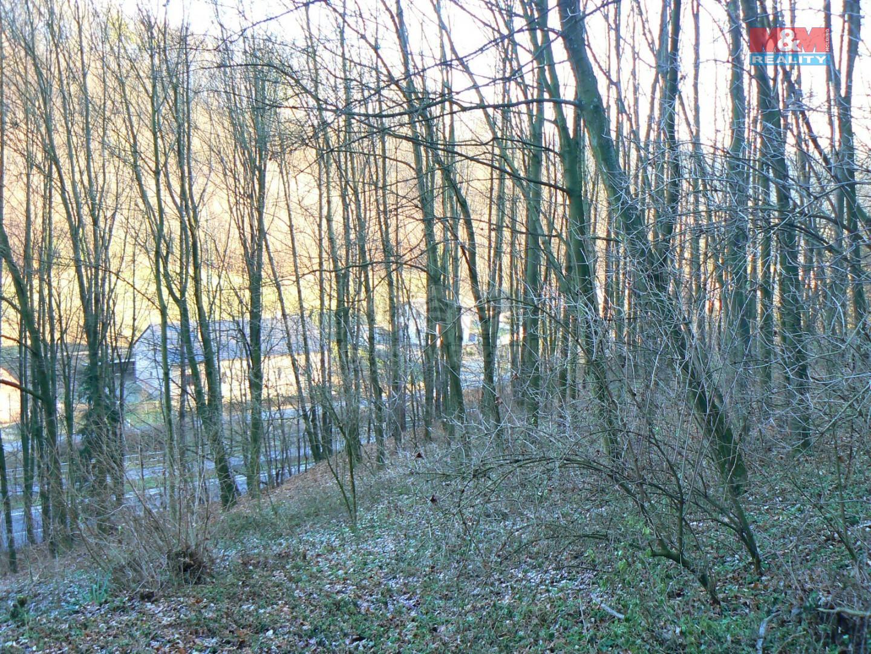 Prodej lesa, 10394 m², Nový Jičín