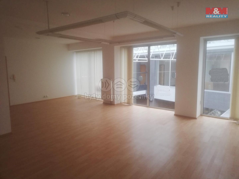 Pronájem kancelářského prostoru, 400 m², ul. Pavelčákova