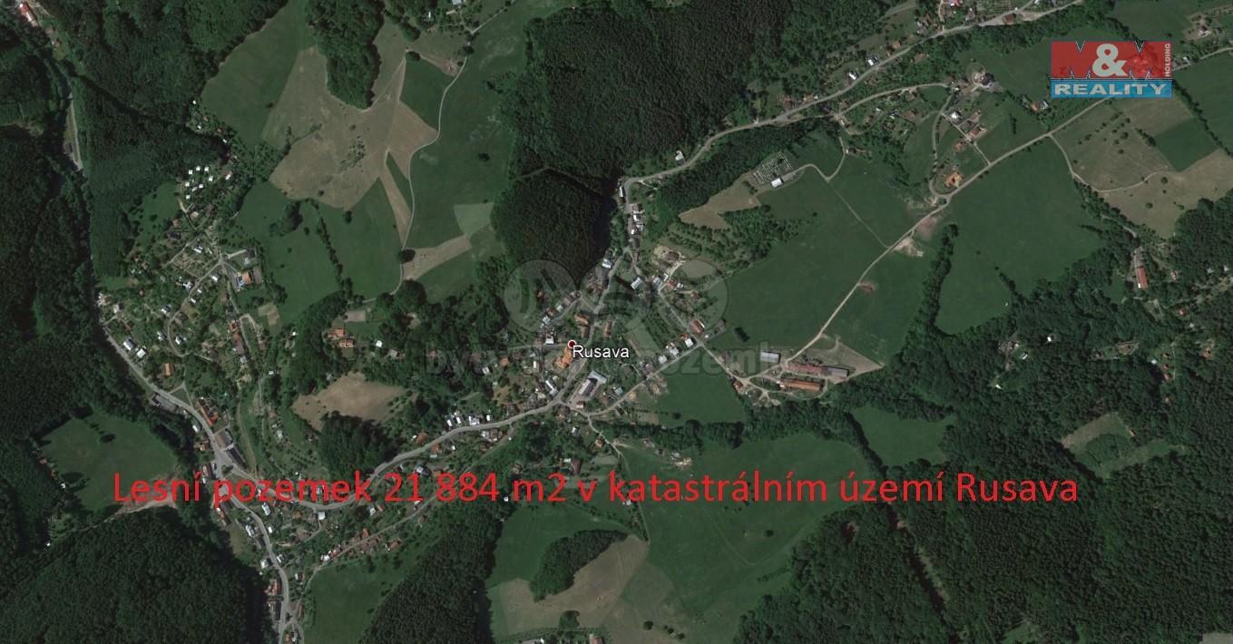 Prodej, les, 21884 m², Rusava
