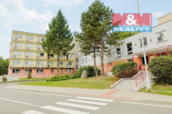 Pronájem domovu pro mládeže, penzionu, 300 m², Šilheřovice