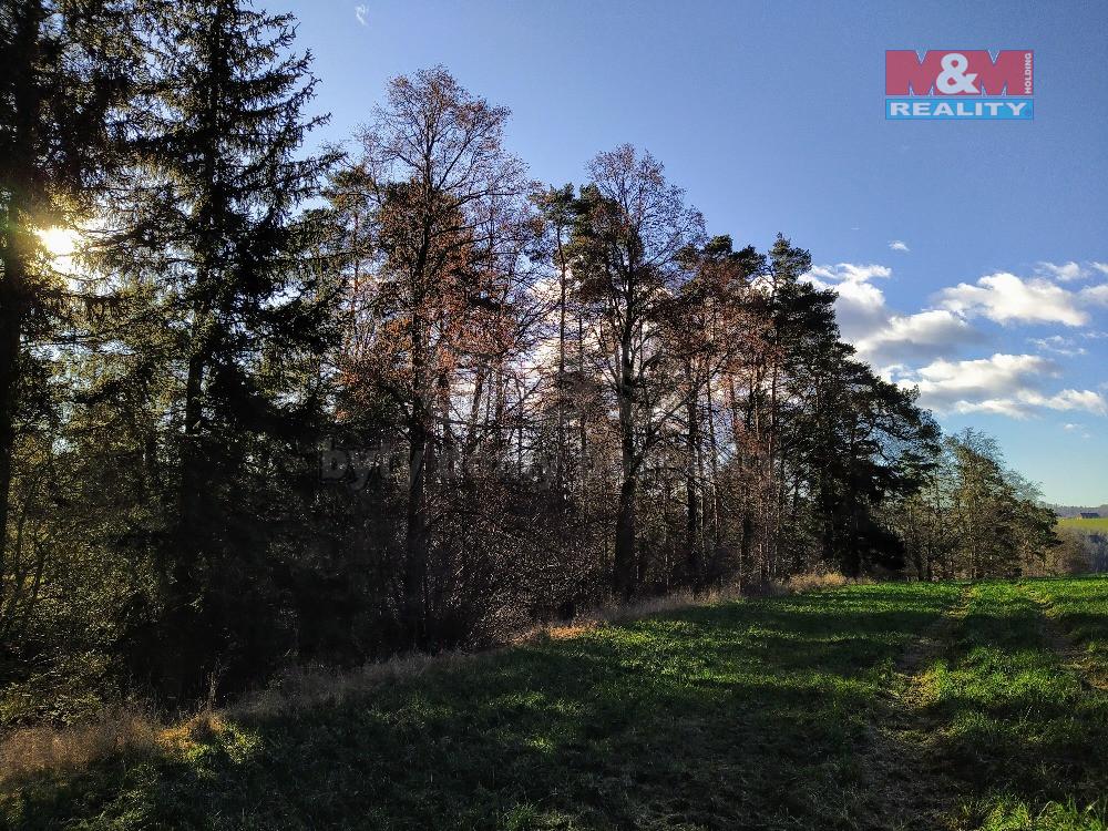 Prodej lesa, 2088 m², Svatoslav