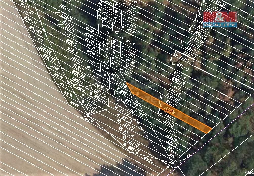 Prodej lesa, 299 m², Skoronice