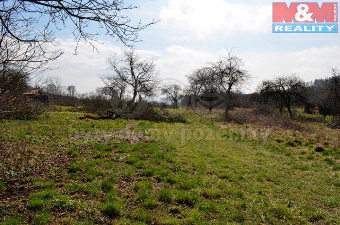 _DSC0252 (Prodej, pozemek, 913 m2, Horní Temenice, Šumperk), foto 1/3