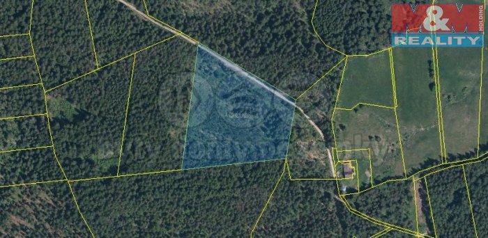 Katastrální mapa (Prodej, lesní pozemek, 20917 m2, Stachy), foto 1/3