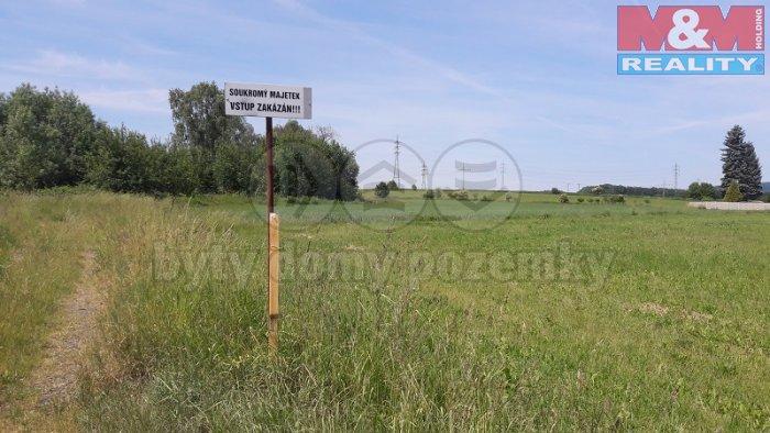 pohled na pozemek (Prodej, stavební pozemek, 9140 m2, Česká Lípa - D. Libchava), foto 1/4
