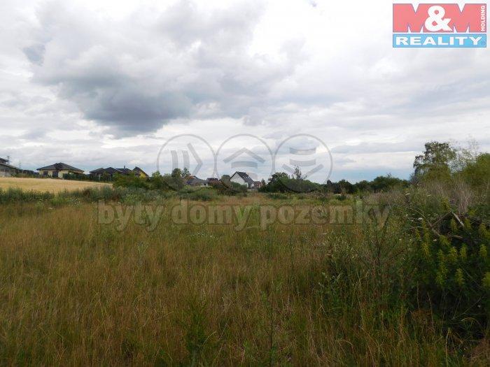 DSCN4548 (Prodej, orná půda, 5359 m2, Hřebeč), foto 1/4