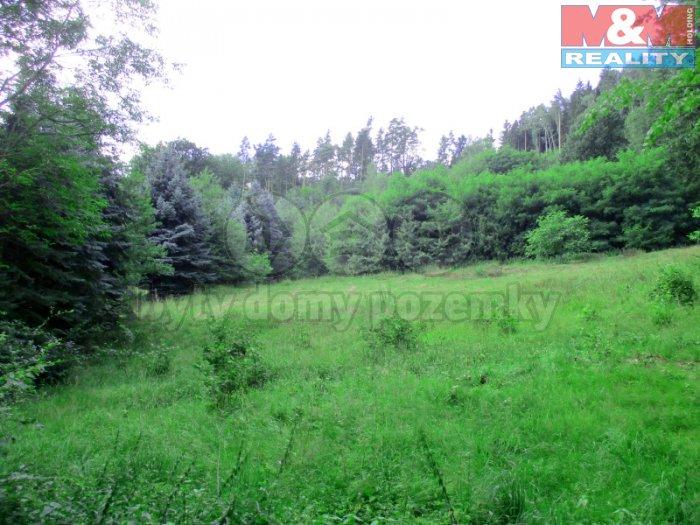 Prodej, stavební pozemek, 6500 m2, Svojkov