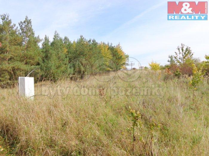 DSC02869 (Prodej, stavební pozemek, 822 m2, Lešany, Břežany), foto 1/21