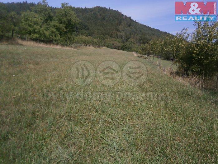 Prodej, stavební pozemek, 4708 m2, Lukov