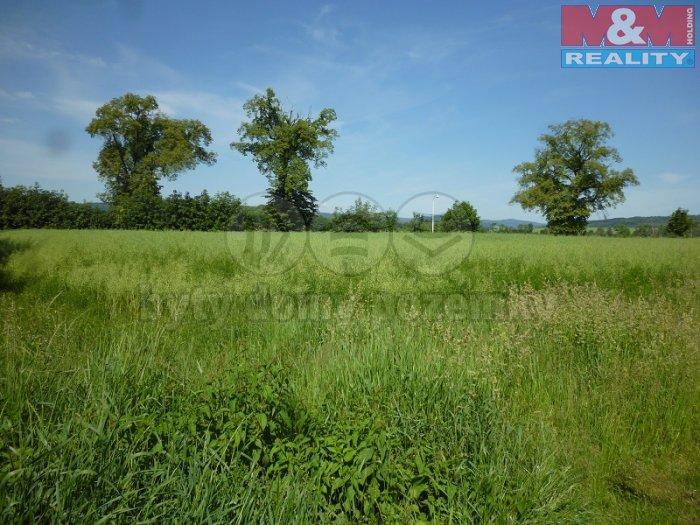 Prodej, pozemek 2902 m2, Krnov