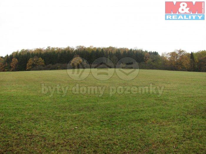 IMG_1405 (Prodej, pozemky, 146410 m2, Pohorovice - Kloub), foto 1/6