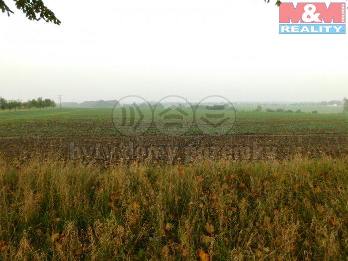 DSCN4900 (Prodej, Pole, 5039 m2, Tršice - Hostkovice), foto 1/3