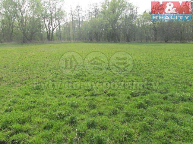 IMG_4663 (Prodej, stavební pozemek, 5.221 m2, Kravaře), foto 1/9