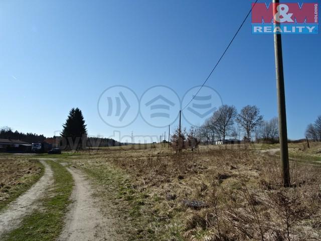 (Prodej, pozemek, 2846 m2, Skalná - Starý Rybník), foto 1/7