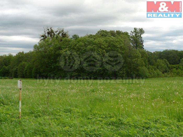 P1050890 (Prodej, stavební pozemek, 2826 m2, Dolní Domaslavice), foto 1/5