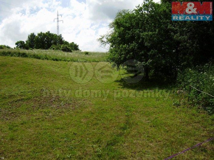 Pohled na pozemek (Prodej, pozemek, 4561 m2, Brantice), foto 1/4
