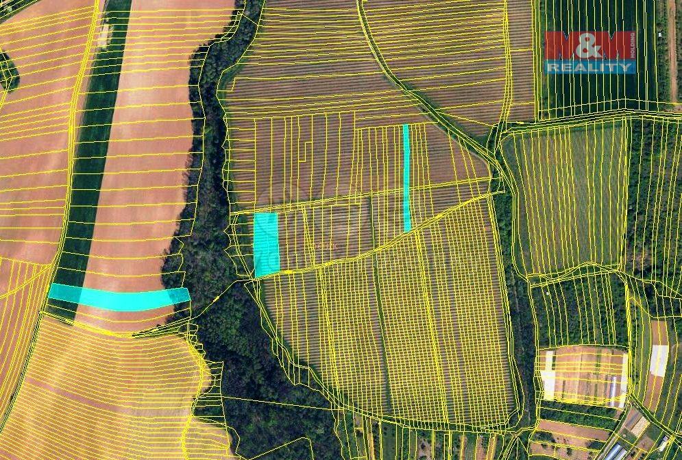 Prodej, vinice a orná půda, 3372 m2, Hostějov