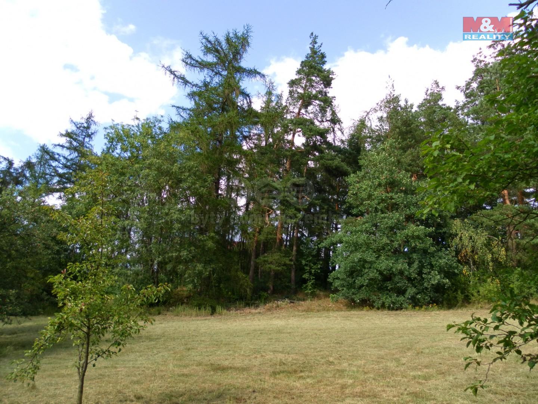 (Prodej, les, 24097 m2, Hradiště- Bezděkov), foto 1/13