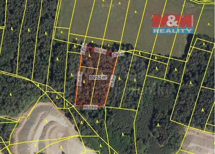 Prodej, les, 5328 m2, Předklášteří