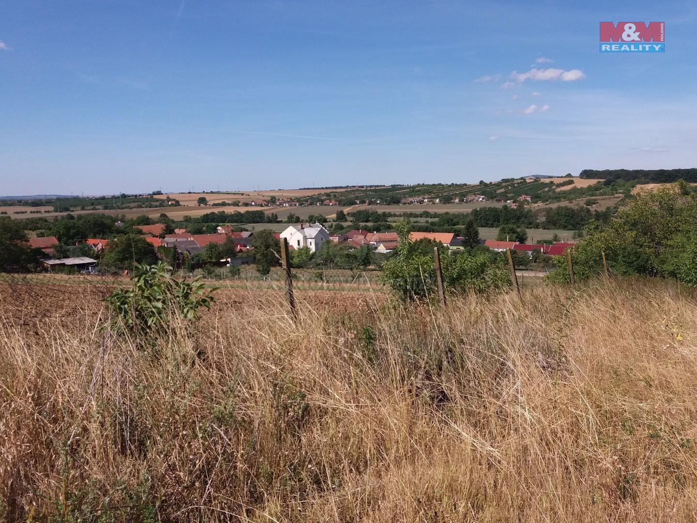 Prodej, pozemek, 4556 m2, Kelčany u Kyjova