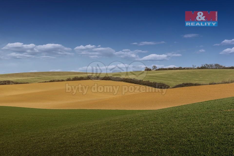 Prodej, pole, 25,09 ha, Krnov - Krásné Loučky