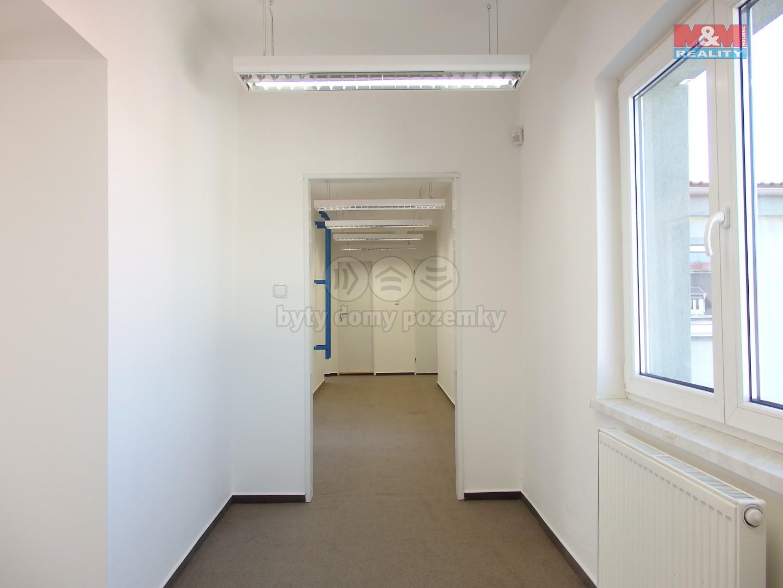 Pronájem, komerční prostory, 120 m2, ul. Dobrovského